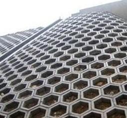空心六棱块砖使用现场图片